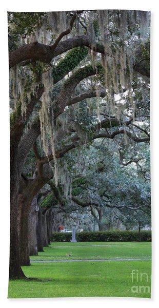 Emmet Park In Savannah Hand Towel