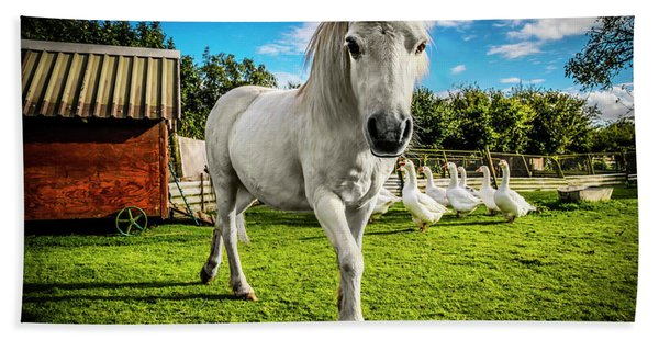 English Gypsy Horse Bath Towel