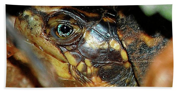 Eye Of A Turtle Hand Towel