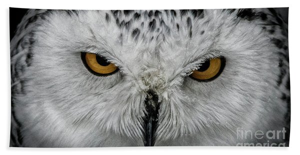 Eye-to-eye Hand Towel