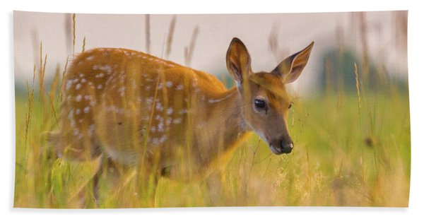 Hand Towel featuring the photograph Fawn In Grasslands by John De Bord