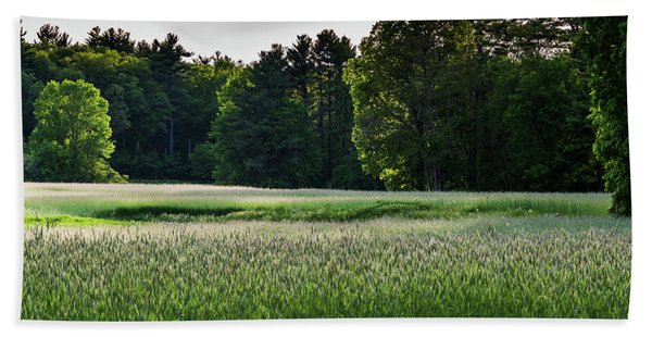 Field Of Green Bath Towel