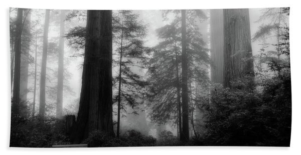 Fog Among The Redwoods Bath Towel