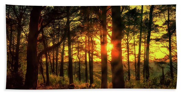 Forest Sunset Hand Towel