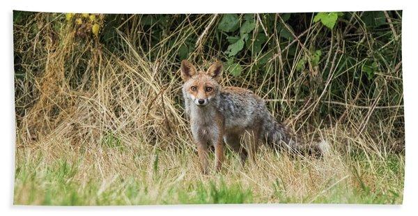 Fox In The Woods Bath Towel