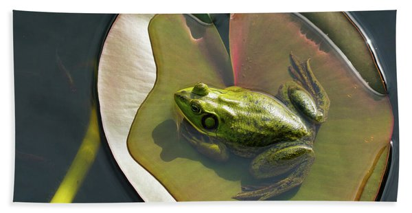 Frog Chilling On A Lilly Pad Delray Beach Florida Bath Towel