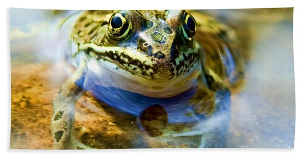 Frog In Pond Bath Towel