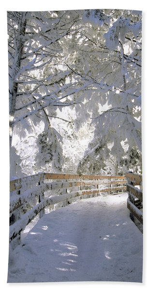 Frosty Boardwalk Bath Towel