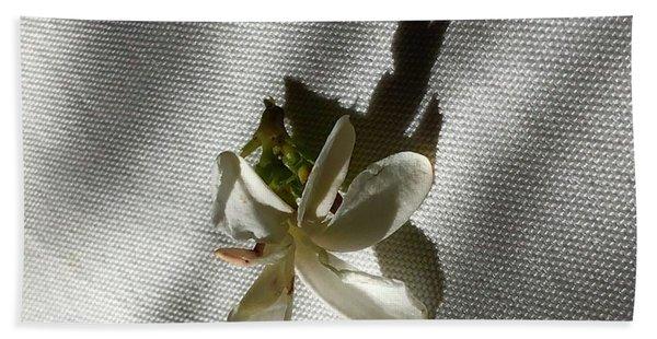 Gardenia On Tablecloths  Hand Towel