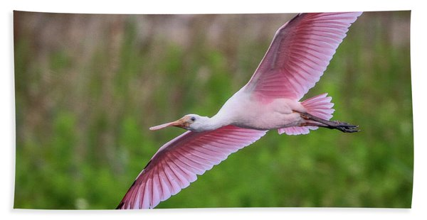 Bath Towel featuring the photograph Gliding Spoonbill by Tom Claud
