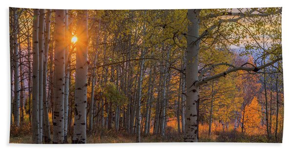 Glowing Aspen, La Sal Mountains Hand Towel