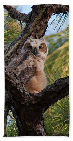 Great Horned Owlet Hand Towel