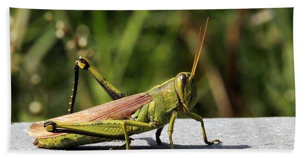 Green Grasshopper Hand Towel