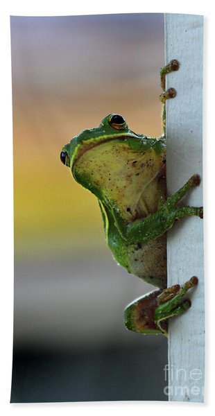 Green Tree Frog  It's Not Easy Being Green Hand Towel