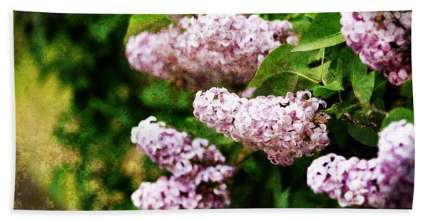 Grunge Lilacs Hand Towel
