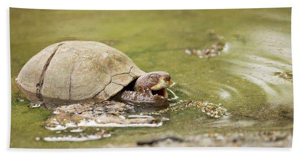 Happy Turtle Bath Towel