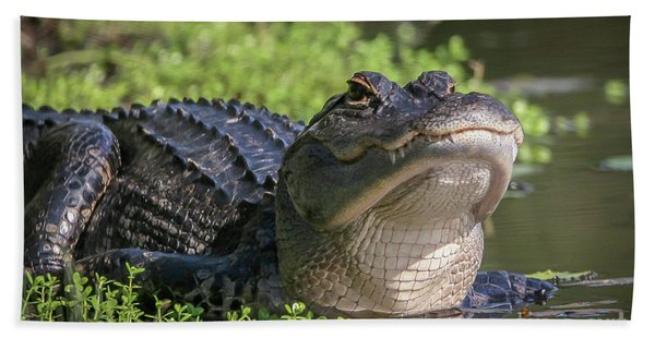 Bath Towel featuring the photograph Heads-up Gator by Tom Claud