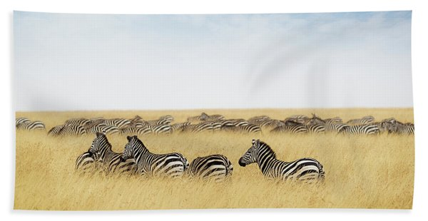 Herd Of Zebra In Tall Grass Of Kenya Africa Hand Towel