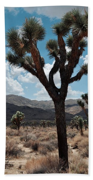 Hidden Valley Joshua Tree Portrait Hand Towel