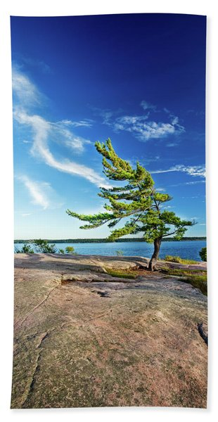Iconic Windswept Pine Hand Towel