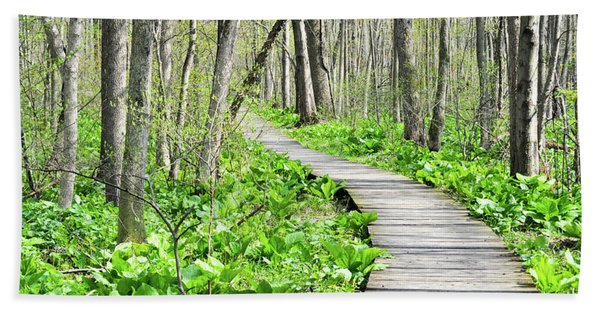 Indiana Dunes Great Green Marsh Boardwalk Hand Towel
