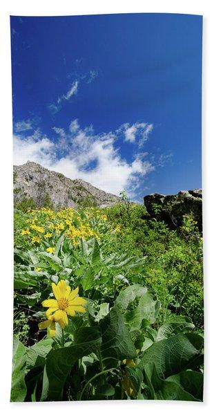 Jenny Lake Mountainside Hand Towel