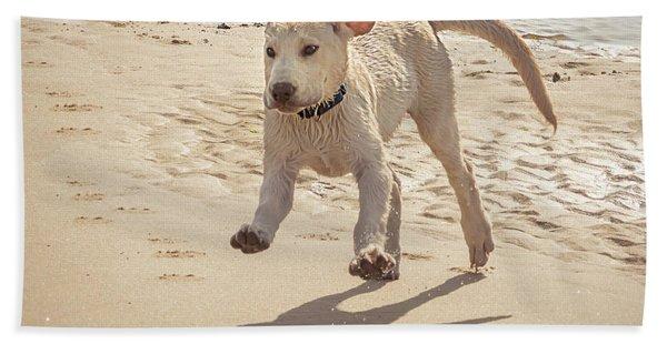 Labrador Jumping Hand Towel