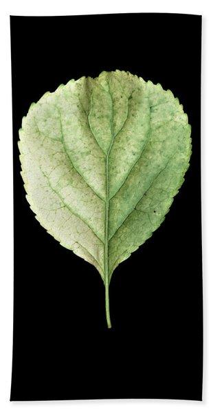 Leaf 19 Bath Towel