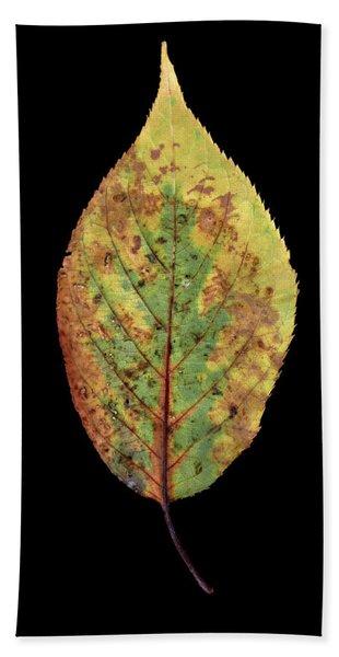 Leaf 5 Hand Towel