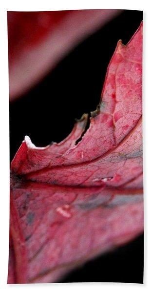 Leaf Study I Hand Towel