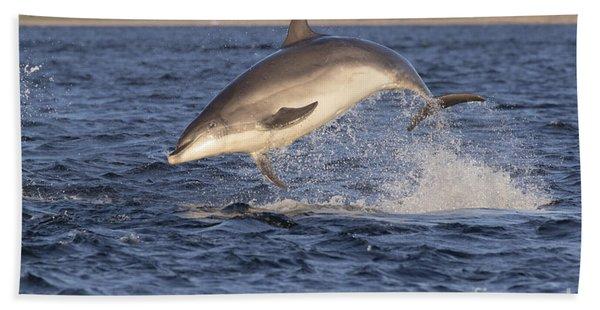 Jolly Jumper - Bottlenose Dolphin #40 Bath Towel