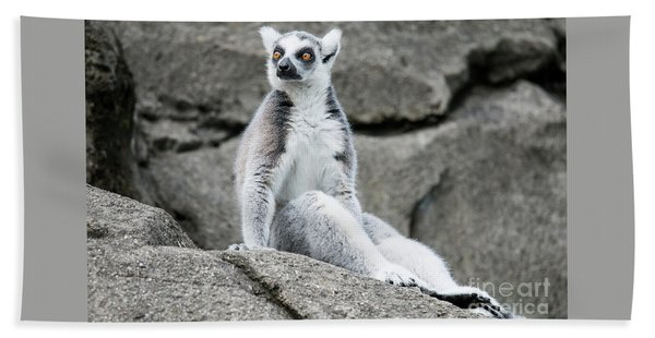 Lemur The Cutie Bath Towel
