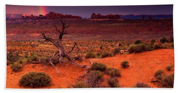Hand Towel featuring the photograph Light Of The Desert by John De Bord