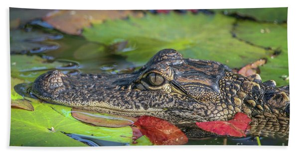 Bath Towel featuring the photograph Lily Pad Gator by Tom Claud