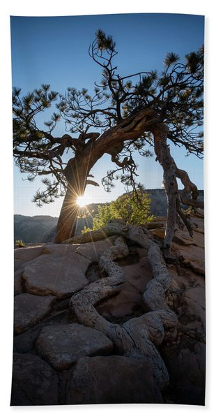 Hand Towel featuring the photograph Lone Tree In Zion National Park by James Udall