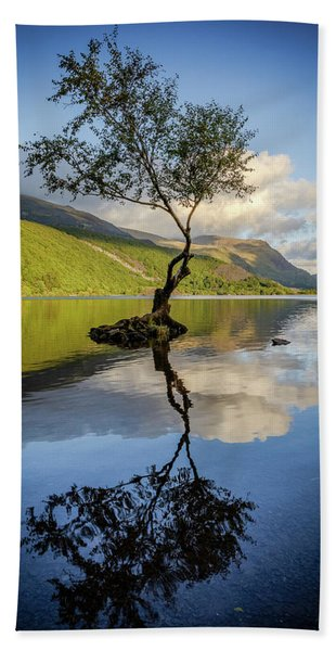 Lone Tree, Llyn Padarn Hand Towel