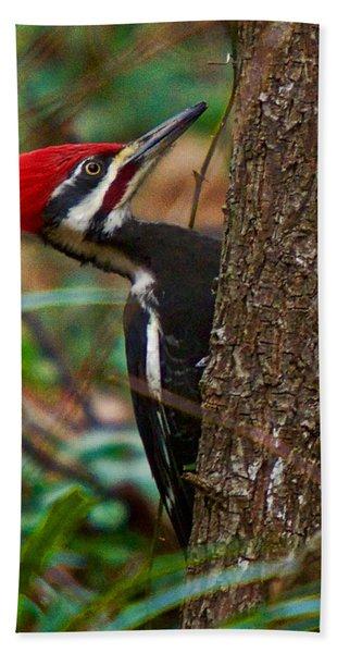 Male Pileated Woodpecker Hand Towel
