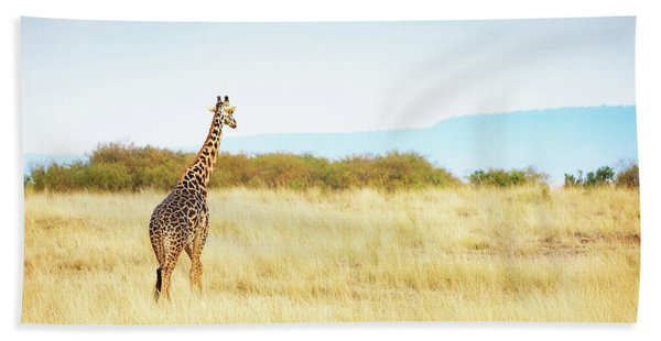 Masai Giraffe Walking In Kenya Africa Hand Towel