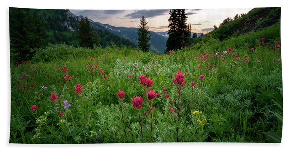 Hand Towel featuring the photograph Meadow Of Wildflowers In The Wasatch by James Udall