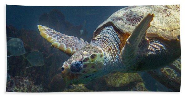Meandering Green Sea Turtle Hand Towel
