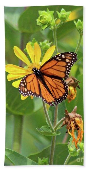 Mighty Monarch   Hand Towel