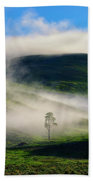 Bath Towel featuring the photograph Misty Morning by Greg Norrell