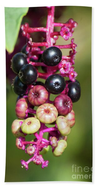 Mixed Berries On Branch Bath Towel