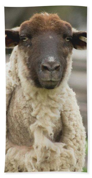 Moma Sheep Bath Towel