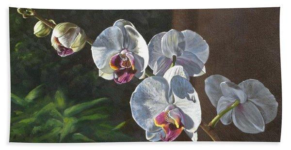 Morning Phaleanopsis Hand Towel