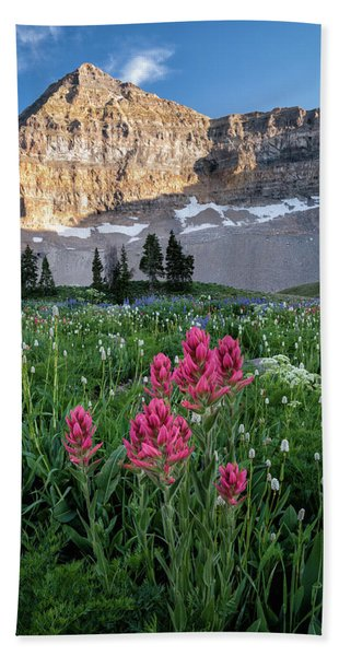 Hand Towel featuring the photograph Mount Timpanogos Wildflowers by James Udall