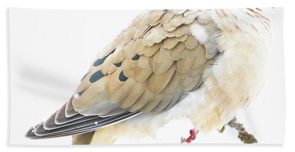 Mourning Dove, Snowy Morning Bath Towel