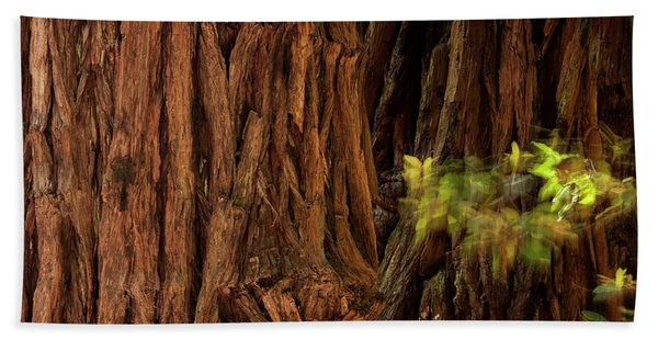 Sequoia Bath Towel