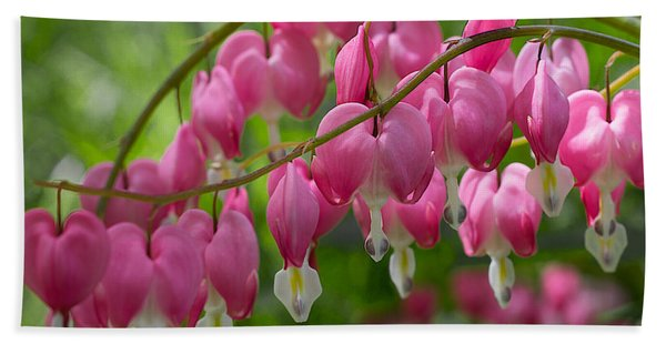Bath Towel featuring the photograph Bleeding Heart by Patti Deters