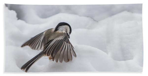 Bath Towel featuring the photograph Chickadee - Wings At Work by Patti Deters